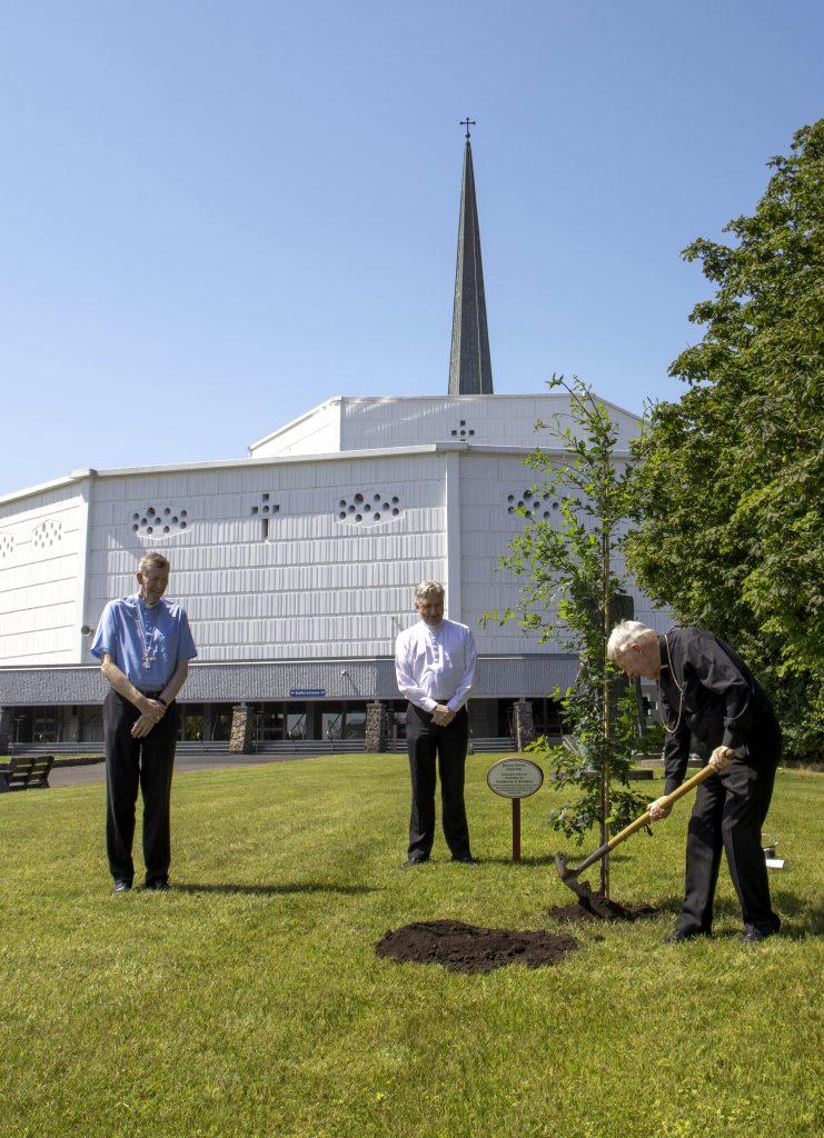 3. Archbishop Michael Neary planting Irish Oak Tree at Knock Shrine (See file info)