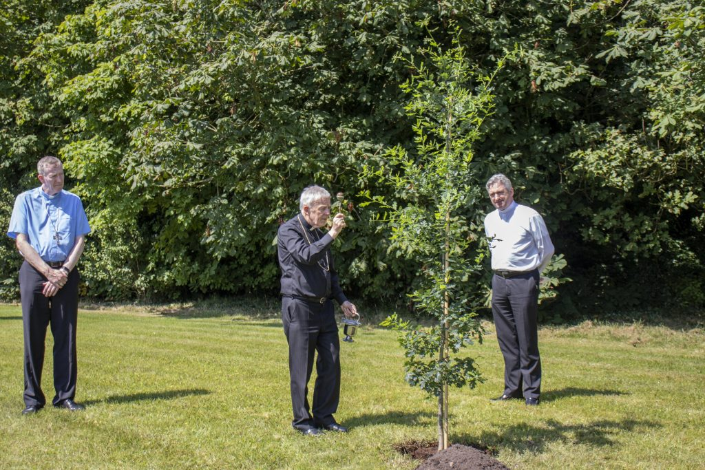 7. Blessing of an Irish Oak Tree at Knock Shrine (See file info)
